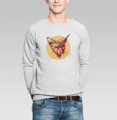 Кот сфинкс - Купить мужские свитшоты хипстерские в Москве, цена мужских  хипстерских  с прикольными принтами - магазин дизайнерской одежды MaryJane
