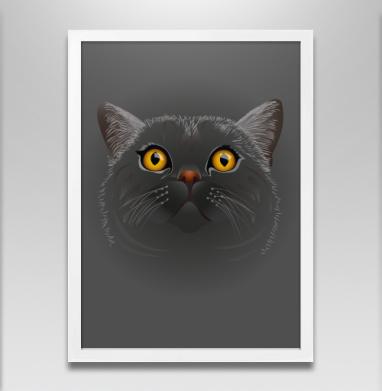 Котик любопытный - Постер в белой раме, секс