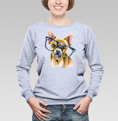 Собака в очках - Купить детские свитшоты с собаками в Москве, цена детских свитшотов с собаками  с прикольными принтами - магазин дизайнерской одежды MaryJane