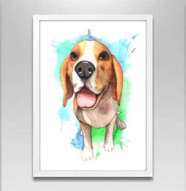 Бигль Юджин - Постер в белой раме, собаки