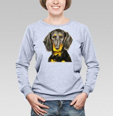 Собака Такса - Купить детские свитшоты с собаками в Москве, цена детских свитшотов с собаками  с прикольными принтами - магазин дизайнерской одежды MaryJane