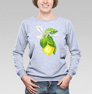 Сочный лимон - Купить детские свитшоты с фруктами в Москве, цена детских свитшотов с фруктами  с прикольными принтами - магазин дизайнерской одежды MaryJane