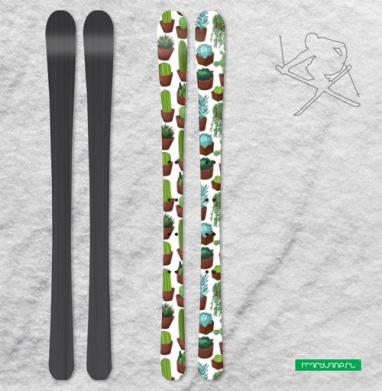 Суккуленты - Наклейки на лыжи