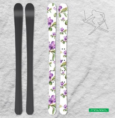 Багульник, ботаническая иллюстрация - Наклейки на лыжи