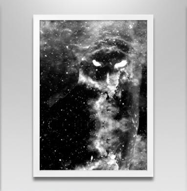 Космическая совуля - Постеры, птицы, Популярные