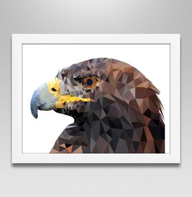 Серьезный орел - Постер в белой раме