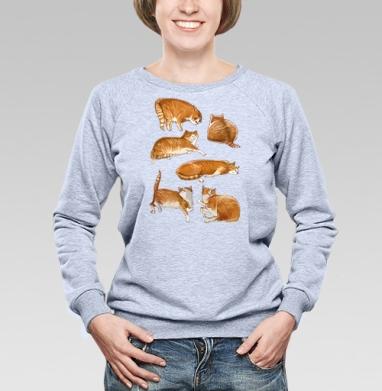 Паттерн с рыжими котами - Свитшоты женские. Новинки