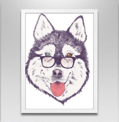 Пёс нацепил очки на нос - Постер в белой раме, собаки