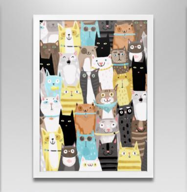 Многокотов - Постеры, кошка, Популярные