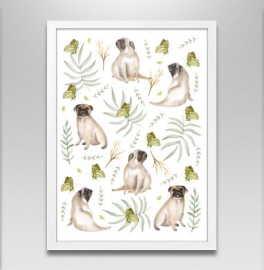 Мопсы - Постер в белой раме, собаки