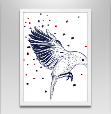Птицафлай - Постеры, красота, Популярные