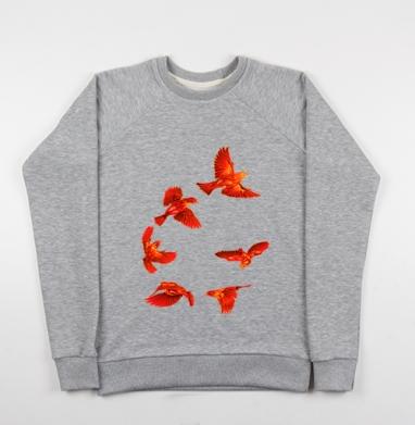 Birdies - Купить детские свитшоты с крыльями в Москве, цена детских свитшотов с крыльями с прикольными принтами - магазин дизайнерской одежды MaryJane