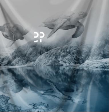 Летающие черепахи - горы, Популярные