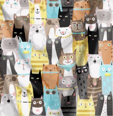 Многокотов - кошка, Популярные